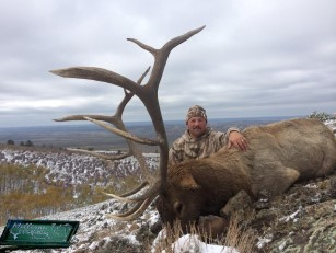 Milliron TJ outfitting Elk Hunting Colorado and Wyoming