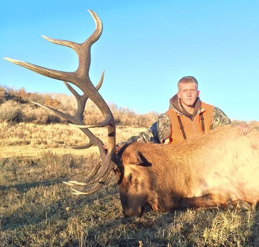 Photo/Milliron Outfitting Colorado Elk
